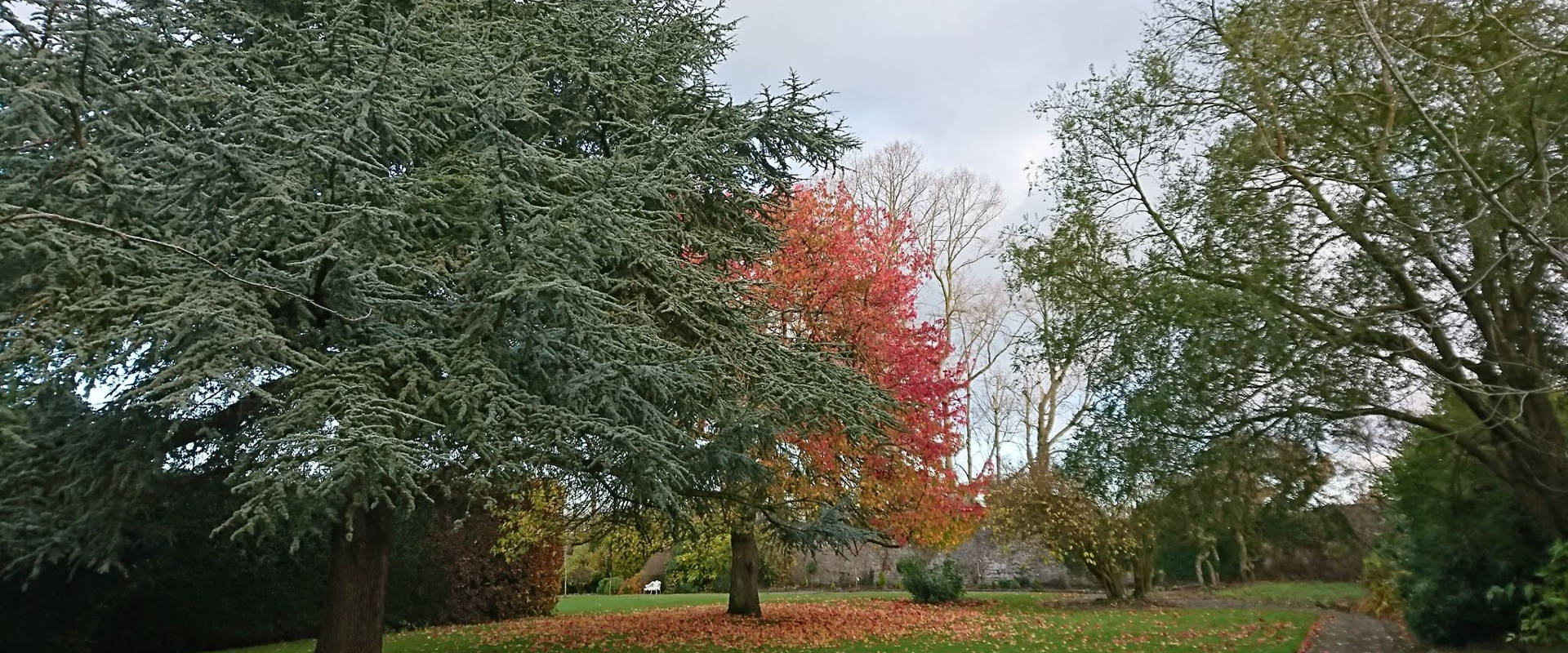 Victorian Walled Garden in Autumn
